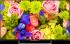 Sony KDL50W809CBAEP